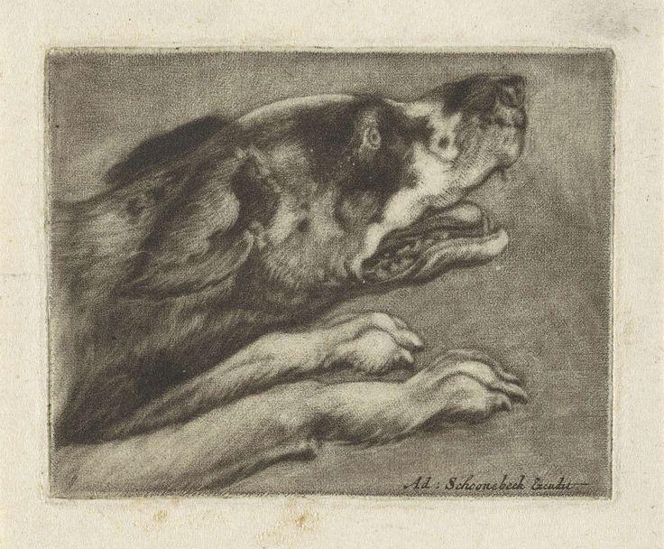 Anonymous | Kop en voorpoten van een blaffende hond, Anonymous, Adriaen Schoonebeek, 1670 - 1714 |