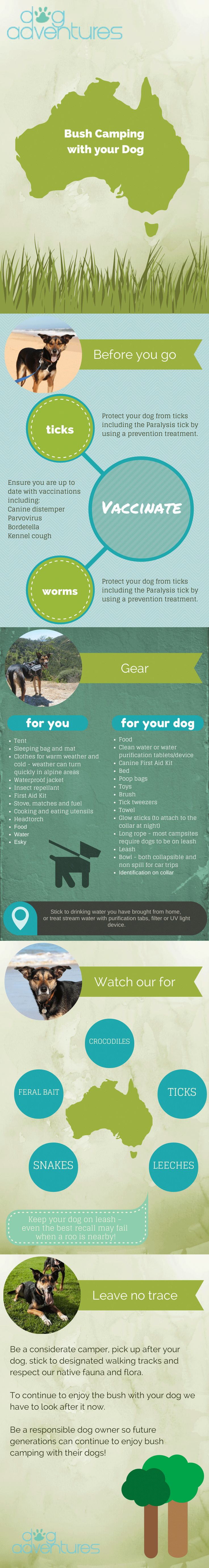 Bush Camping with your Dog Infographic - Dog Adventures #camping #infographic #dog