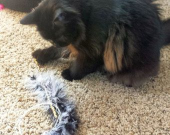 Black & Grey Flying Feather Boa TEASER CAT TOY Optional Jingle Bell
