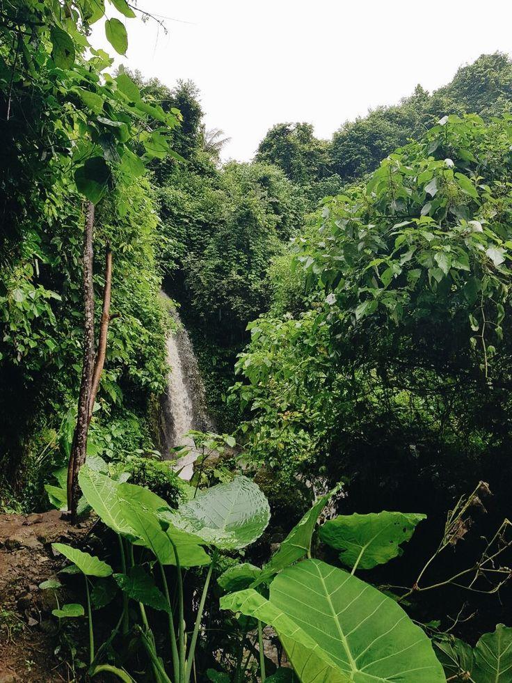 ✨ Pinterest: ash_ january Waterfall, Ubud, Bali  #bali #waterfall #lush