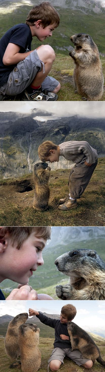 Matteo and his unusual pals - marmots.  How does one become friends with marmots?