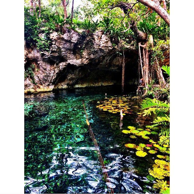 Jungle cave/ sinkhole swimming