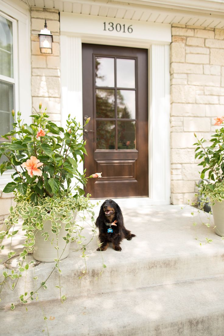 Exterior Doors | A Smart Looking Entry Attracts All Kinds | Bayer Built  Woodworks, Inc