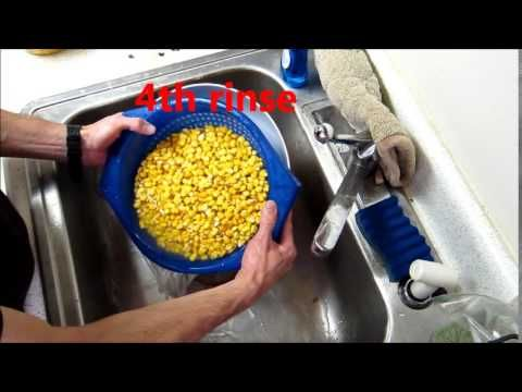 How to make incredible tortillas from scratch-- from cheap feed corn! - YouTube