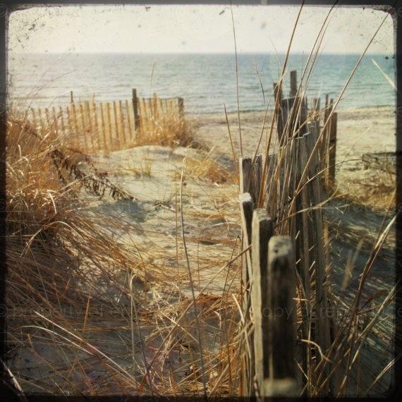 Sandy Cape Cod Beach Dune  5x5 Through the by artstudio54 on Etsy, $20.00