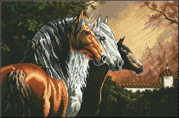 Equine Trio