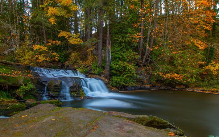 Download wallpapers waterfall, autumn, forest, lake, Millstone Creek, Bowen Park, Nanaimo, British Columbia, Canada