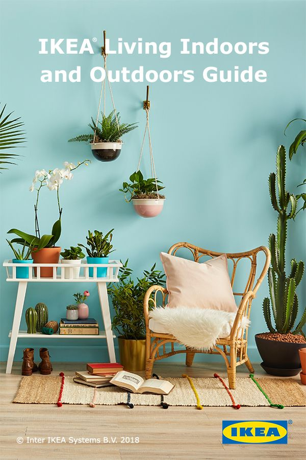 Find The Perfect Indoor Plant For Every Home With Ikea Guide