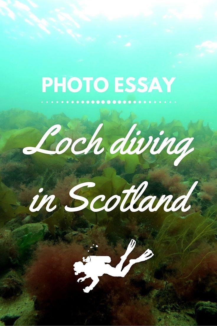 Culture of scotland dissertation
