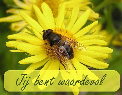 Jij bent waardevol www.relicards.nl