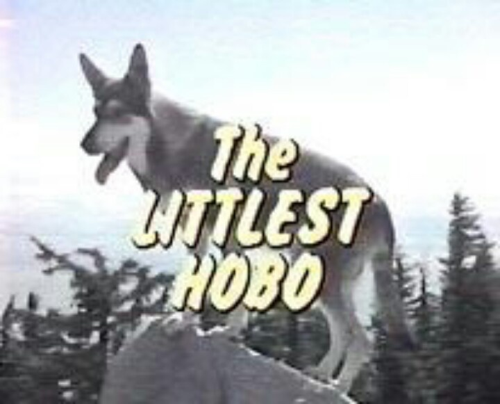 Littlest Hobo...maybe tomorrow I'll want to settle down...One of my all time favourites