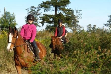 Hog Hollow has some of the BEST Horse riding trails