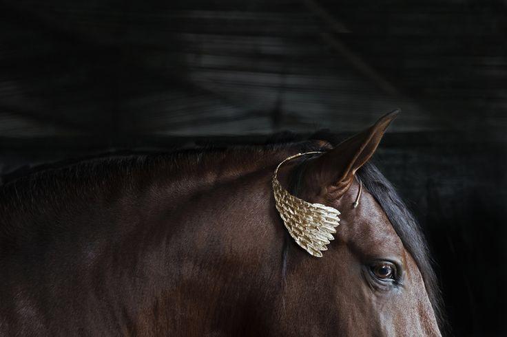 www.pegasebuzz.com | Cocoon horses by Mariana Garcia