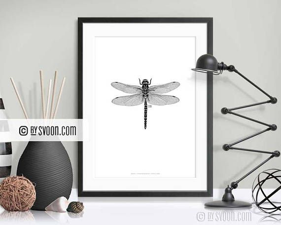 Hand drawn dragonfly poster. NEW in my #Etsy shop www.bysvoon.etsy.com Dragonfly Print Insect Poster Black & White Dragonfly