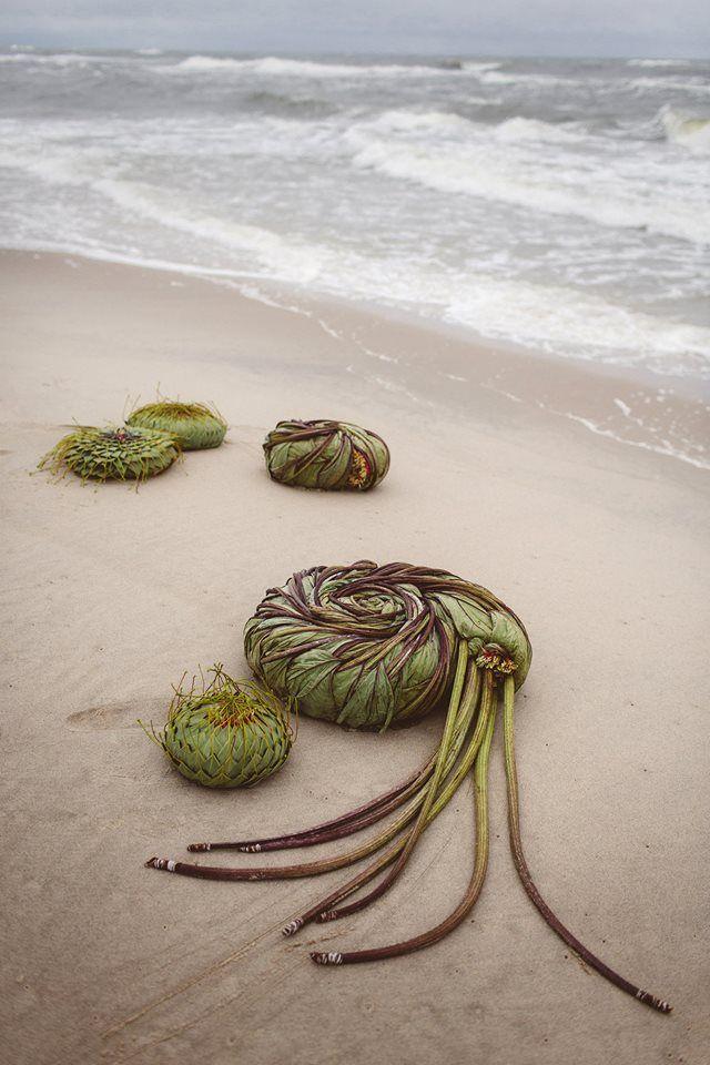 woven seaweed