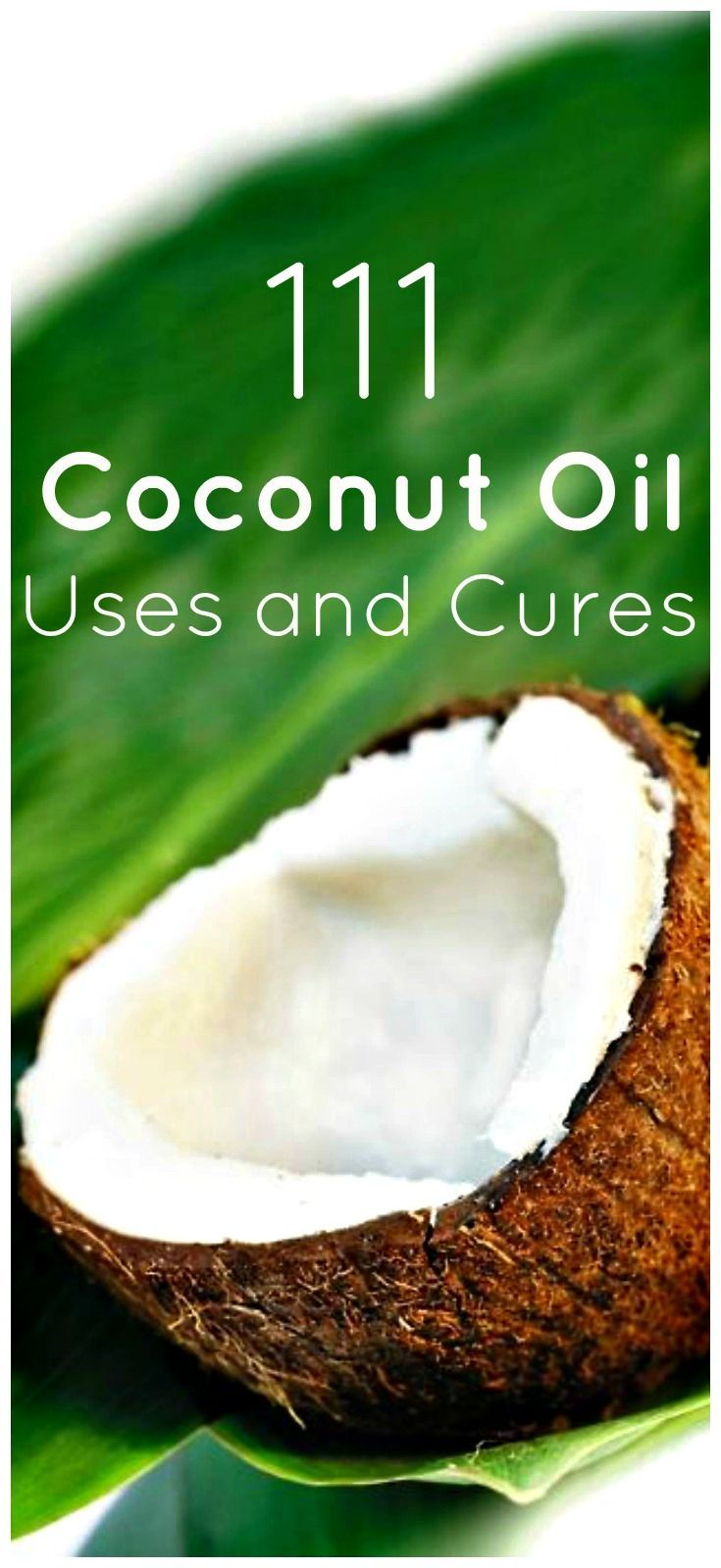 Coconut oil is very popular lately. People have put together hundreds of different uses for this beneficial oil. It has earned his fame for a good reason.