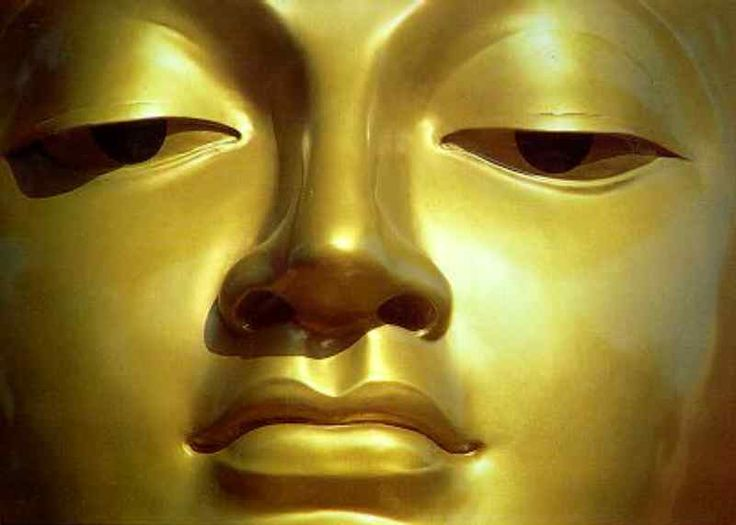 Десять быков (кит. упр. 十牛, пиньинь: shíniú, палл.: шиню, яп. jūgyū дзю: гю:) — в традиции чань-буддизма — серия коротких стихотворений, сопровождающихся картинками, которые иллюстрируют этапы постижения практик махаяны, по мнению их авторов, ведущих к просветлению, а также к последующей совершенной мудрости. Являются чаньской интерпретацией десяти этапов, которые испытывает бодхисаттва, как это описывается в различных сутрах махаяны, особенно в Аватамсака-сутре