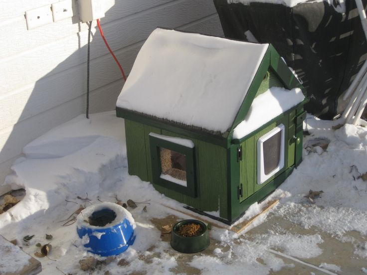 Best 25 insulated cat house ideas on pinterest for Insulated dog houses for winter
