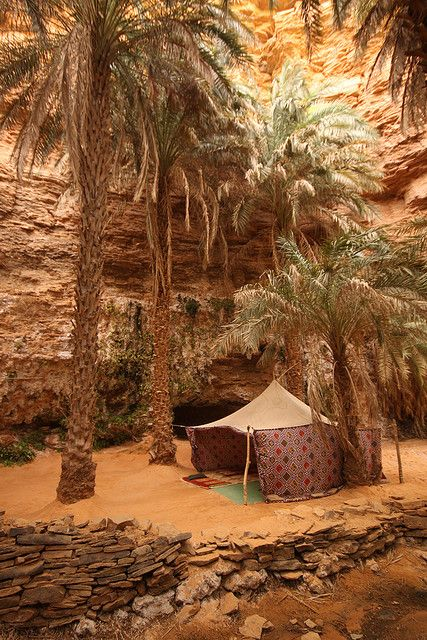 Inviting tent in the oasis of Tarjit, Mauritania