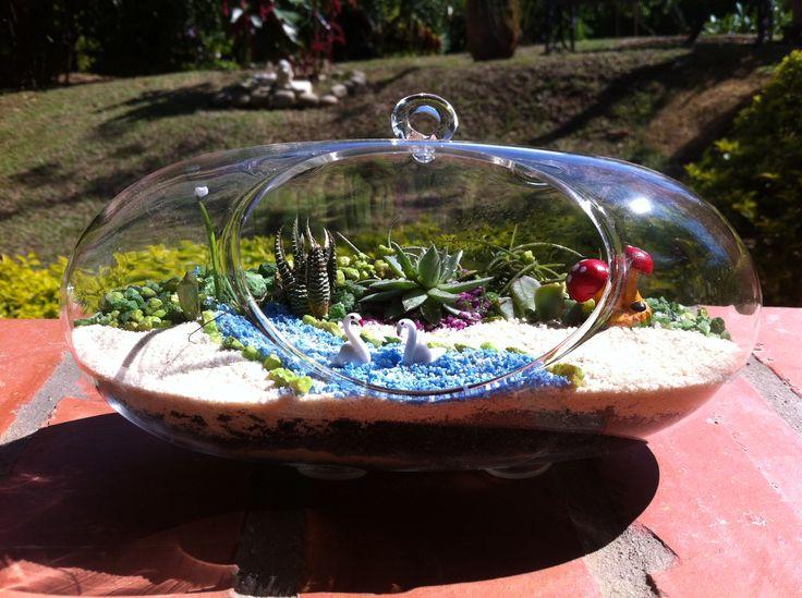 Terrario con suculentas en vidrio