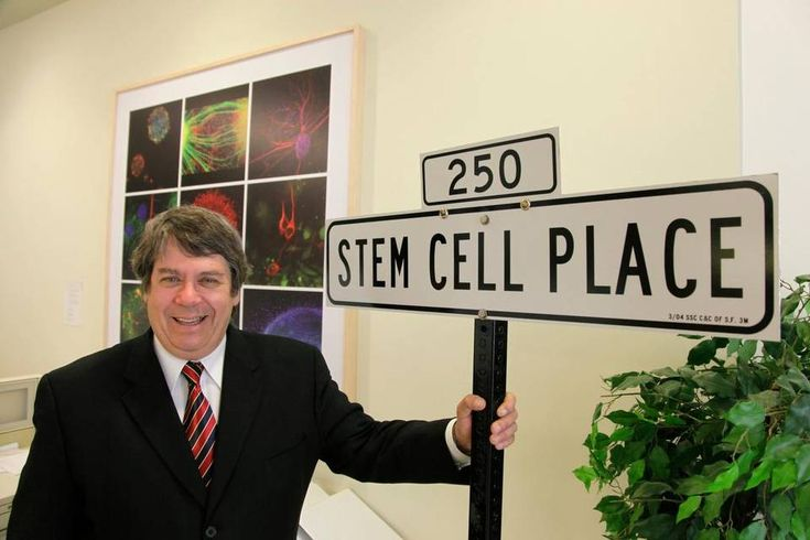 Stem cell company paid $443,500 to former head of state agency that funds research - http://www.orthospinenews.com/stem-cell-company-paid-443500-to-former-head-of-state-agency-that-funds-research/