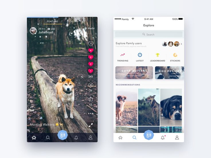 Home & explore screens of my recent project Pamily, a pet video app.