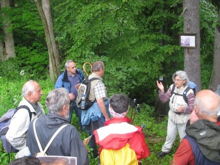 """Unterwegs auf dem Pilgerweg """"Via Romea"""". Am Marmorsteinbruch in der Nähe von Elbingerode."""