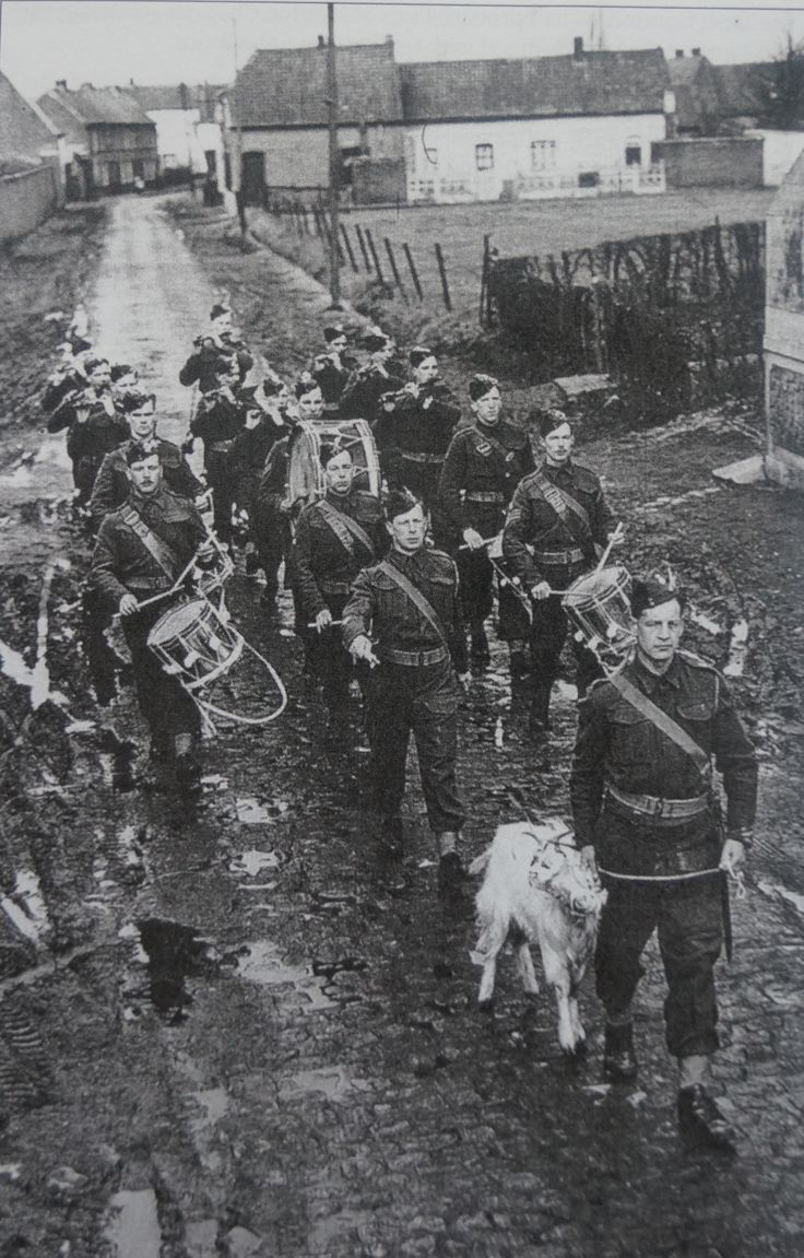Regimental Goat and Corps of Drums, 1 RWF Mountain, France St David's Day 1940. Within months most of these men would be dead or Prisoners of War following the Battalion's last stand at St Venant.