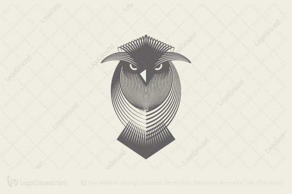 Logo for sale: Owl Logo