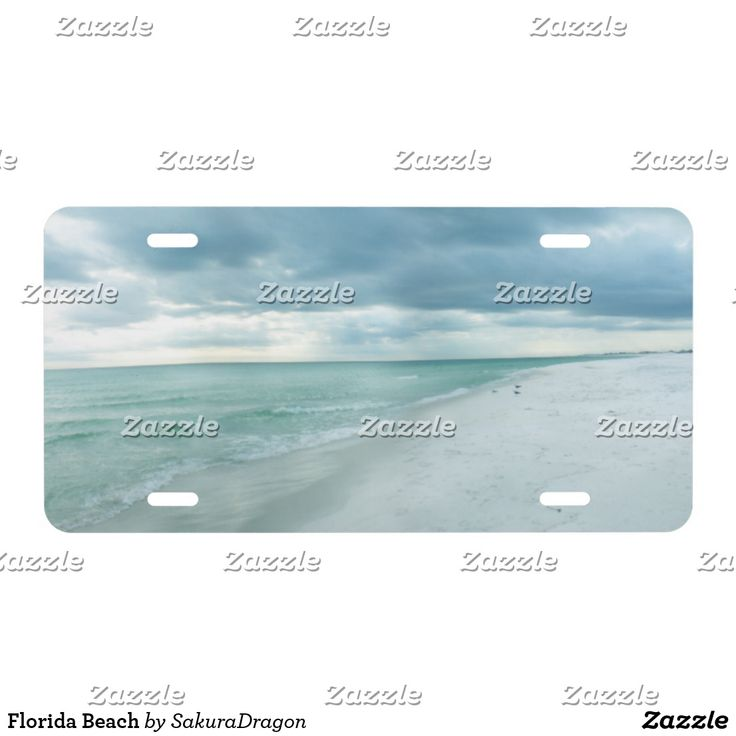 Florida Beach Front decorative License Plates. Personalize it or leave to show only image.  sc 1 st  Pinterest & 158 best Customized FRONT License Plates Decorative for Car Truck RV ...