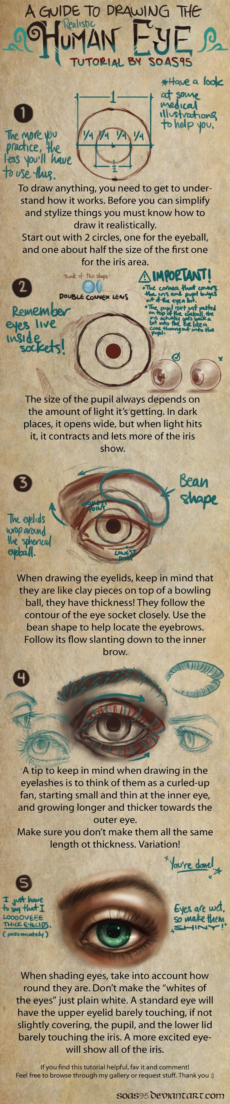 Human Eye- TUTORIAL by *soas95 on deviantART http://soas95.deviantart.com/art/Human-Eye-TUTORIAL-392610867
