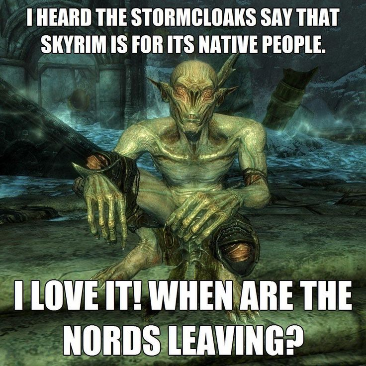 I could never make myself join the Stormcloaks, although I wanted to, just to change things up a bit in my gameplay, but they're so hateful against everyone. Skyrim belongs to the Nords? Yeah, good luck to you four people who're left in Skyrim I hope you're feeling lonely now.