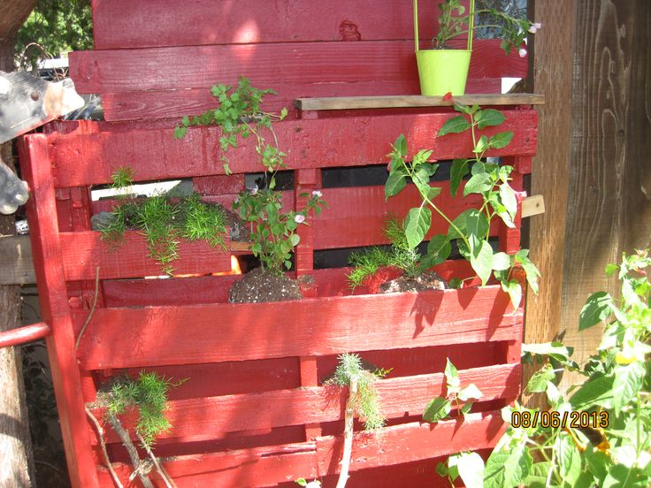 My vertical pallet garden it 39 s a nice privacy screen at for Vertical garden privacy screen