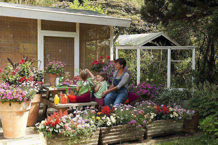 Aanraders voor tuinieren in potten en kuipen - Groen van bij ons - Bloemen en planten