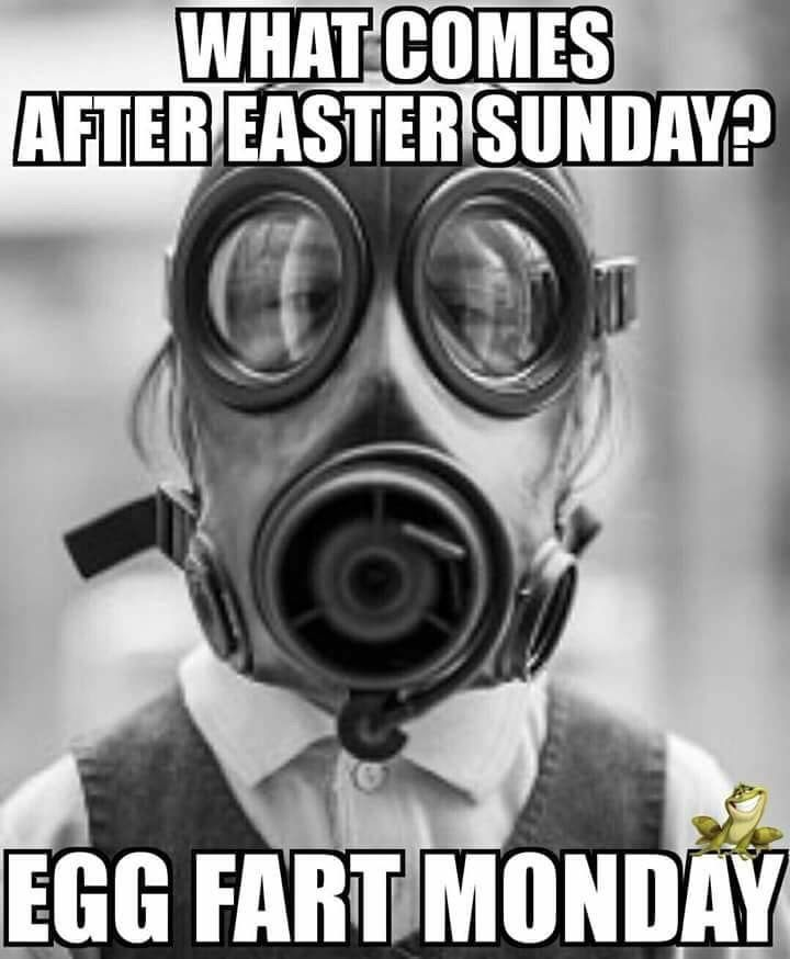 Adult Easter Memes : adult, easter, memes, Teena, Phillimeano, Easter-Funny, Easter, Humor,, Funny, Pictures,, Sunday