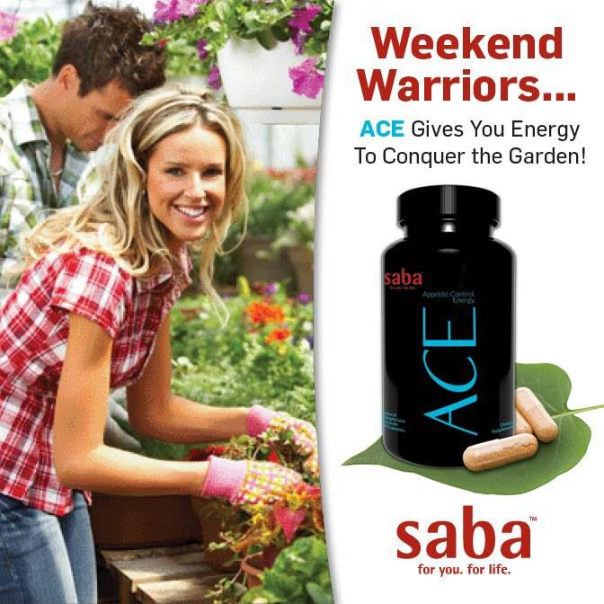 Order your Saba ACE here: www.acehealthwealth.lovemyace.com