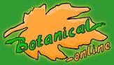 TODO sobre plantas medicinales, medicina alternativa, remedios.....  http://www.botanical-online.com/