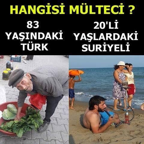 """MYWAY Twitter'da: """"Suriyeli'ler tatilde, aylık asgari ücret kadar ödenek alıyor, TÜRK kendi vatanında aç, işsiz, biçare yaşıyor. ❗️ https://t.co/23GmVhC7Qp"""""""