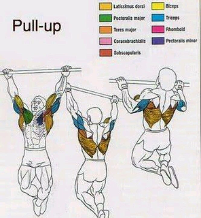 Pull Up Bars Are Excellent.