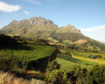 Stellenbosch, South Africa. I called this land home for 6 months. I could see this incredible view outside my kitchen window. Glorious.