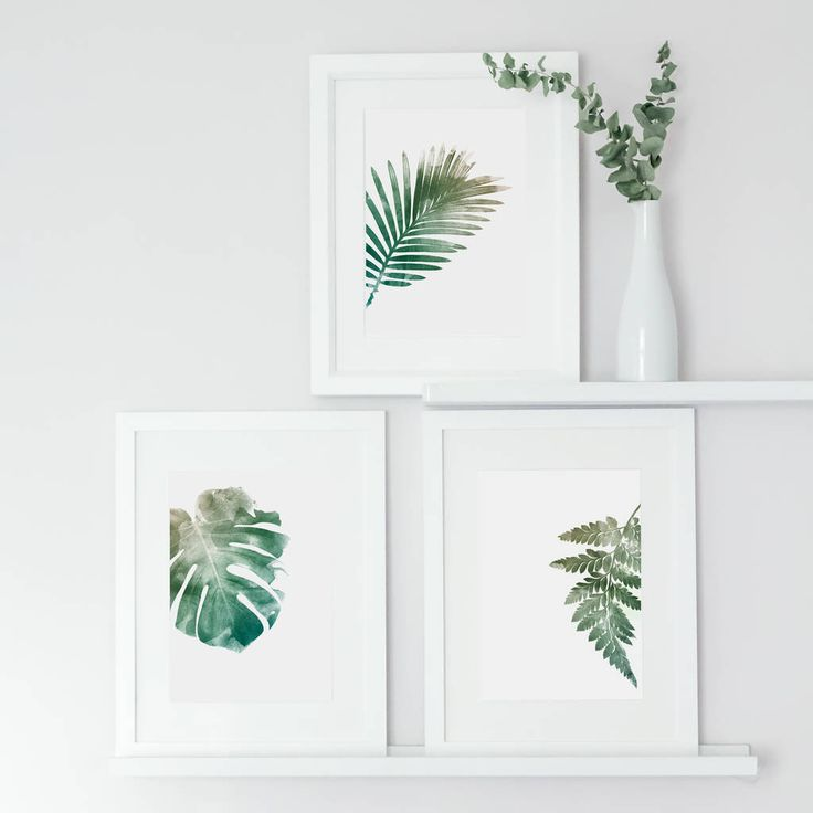 Are you interested in our botanical leaf art print? With our green leaf wall art you need look no further.