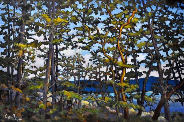 Paintings of Arbutus Trees