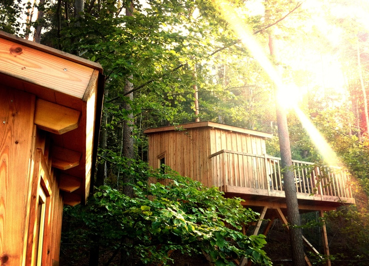 17 best images about tree hotel on pinterest unique hotels trees and a tree. Black Bedroom Furniture Sets. Home Design Ideas
