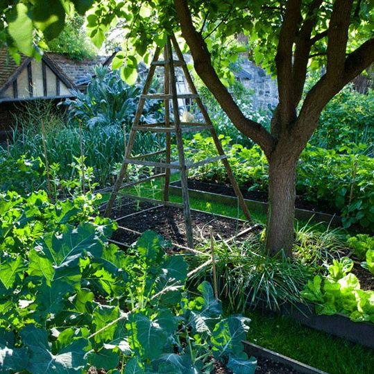 Google Image Result for http://homeideasmag.com/wp-content/uploads/2012/08/6-country-garden-ideas.jpg