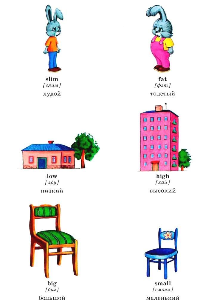 учить английские прилагательные в картинках отрыв