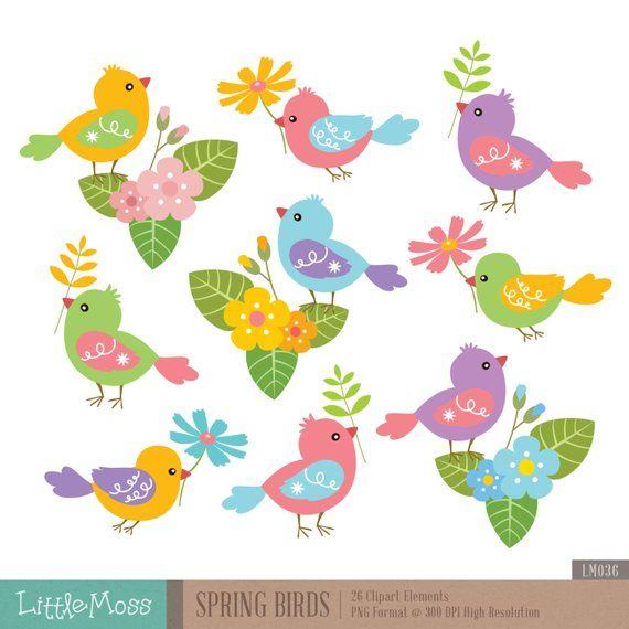 Bird spring. Birds digital clipart flower