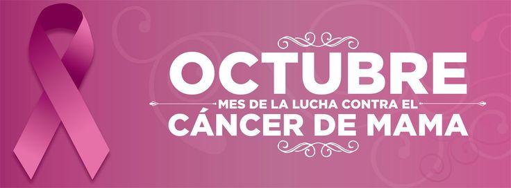 lucha contra el cancer de seno - Google Search