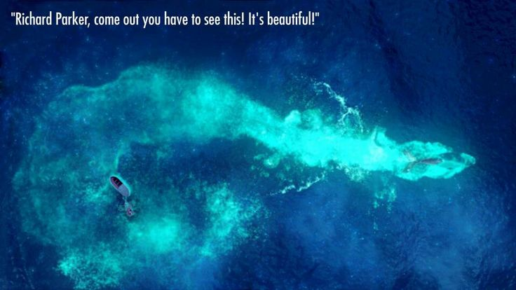 Life Of Pi Quotes I Love You Richard Parker : Richard Parker!!!? Life of Pi Quotes Pinterest