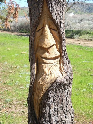 Tree Carvings Faces | tree face.JPG