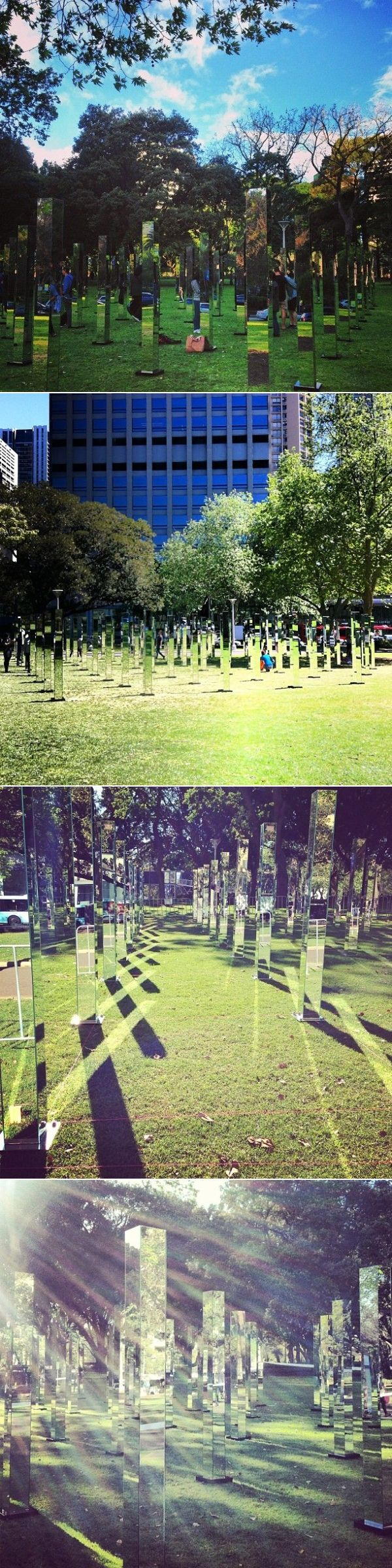 Maze Of Mirrors In A Sydney Park